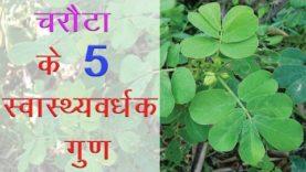 चरौटा के 5 स्वास्थ्यवर्धक गुण (Hindi Health Tips)