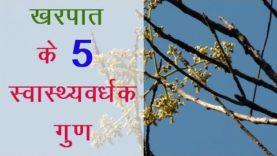 खरपात के 5 स्वास्थ्यवर्धक गुण (Hindi Health Tips)