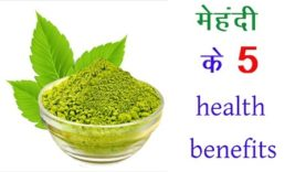मेहंदी के 5 health benefits (Hindi Health Tips)