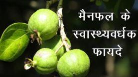 मैनफल के स्वास्थ्यवर्धक फायदे  (Hindi Health Tips)