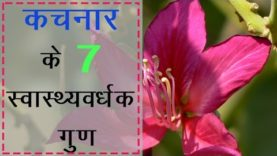 कचनार के स्वास्थ्यवर्धक गुण (Hindi Health Tips)