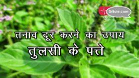 तनाव दूर करने का उपाय है तुलसी के पत्ते Hindi health tips