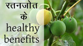 रतनजोत के health benefits (Hindi Health Tips)