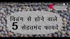 Heart problems से लेकर Skin problems समेत 5 बीमारियों में असरदार विडंग – Hindi Health Tips
