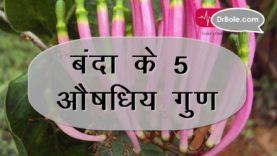 Kidney Stone के अलावा 5 बीमारियों में फायदेमंद बंदा – Hindi Health Tips