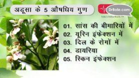 Skin Infection समेत 5 रोगों का आयुर्वेदिक इलाज अडूसा- Hindi Health Tips